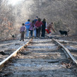 Family, Train Tracks, Dog